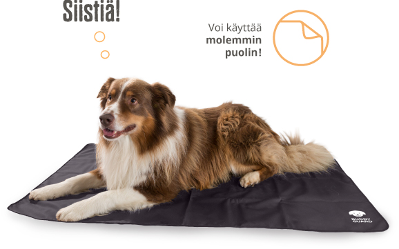 Buddyguard_palstakuva_2